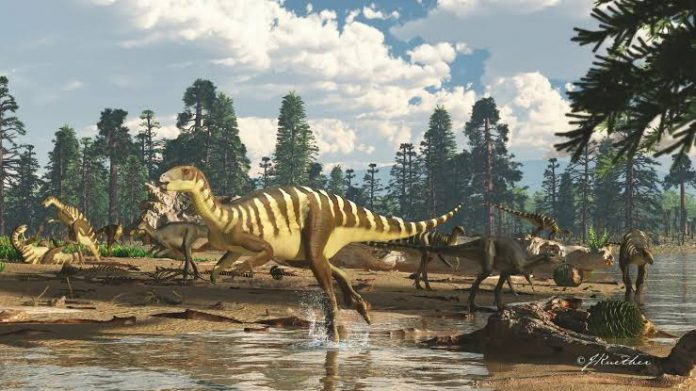 A new Dinosaur Unearthed in Australia